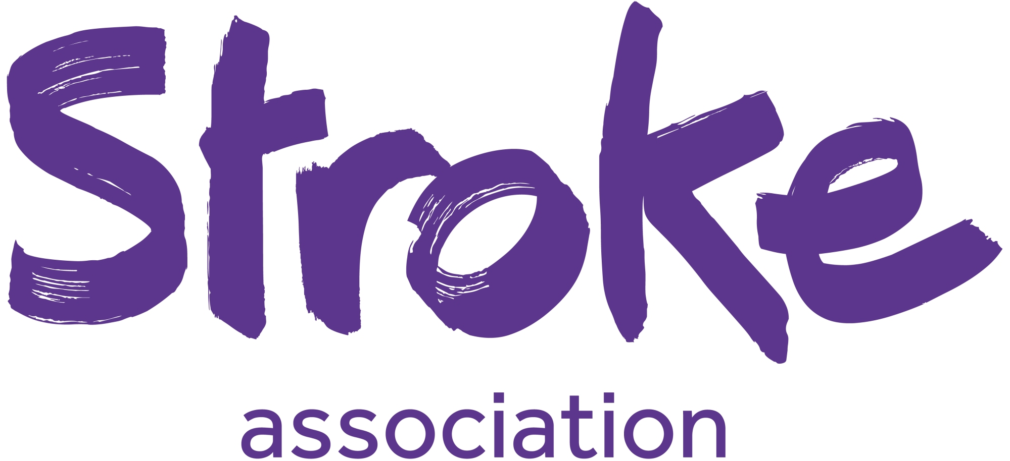 20130501 Stroke Association Logo