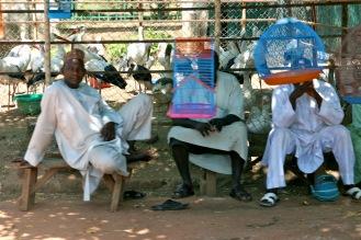 Bird Heads. Kaduna, Nigeria.
