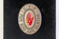 Badge 65. (c) Peter MOLONEY @PeterMoloneyCol